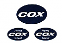 Cox .049 PT-19 Decal Set (QZ)